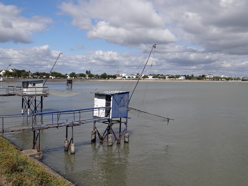 Magasin d'alimentation à vendre - 35.0 m2 - 44 - Loire-Atlantique