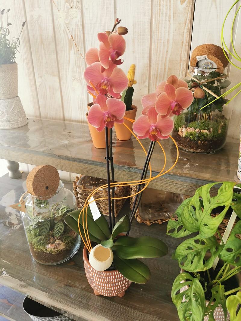 Fleurs à vendre - 360.0 m2 - 44 - Loire-Atlantique
